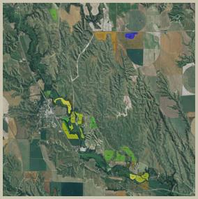 crop-map